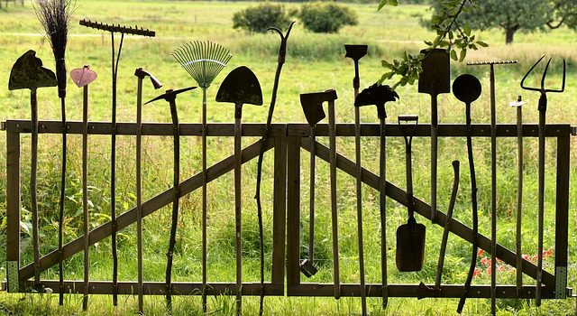 Najważniejsze narzędzia ogrodowe, które musisz mieć